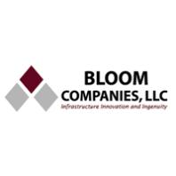 Bloom India ltd