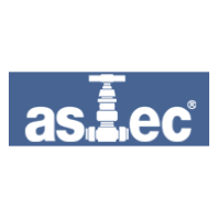 Astec Valves & Fittings Private Limited