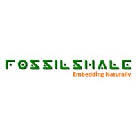 Fossilshale Embedded Technologies