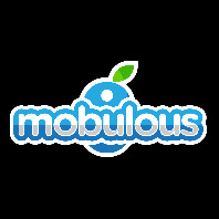 Mobulous Technologies Private Limited