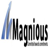 Magnious Solutions Pvt Ltd