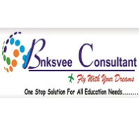 Bnksvee Consulting Agent Pvt Td