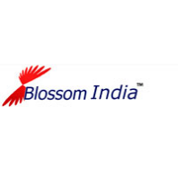 Blossom Hr Services