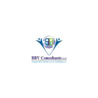 BBV Consutlants