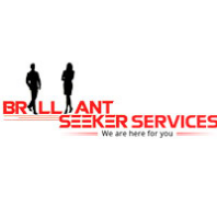 Brilliant Seeker Services