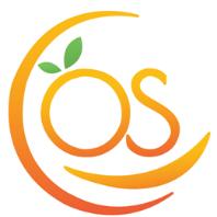 OrangeSkill Technologies