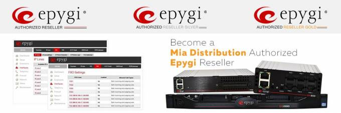 Epygi Support for your Integrated Business Solutions