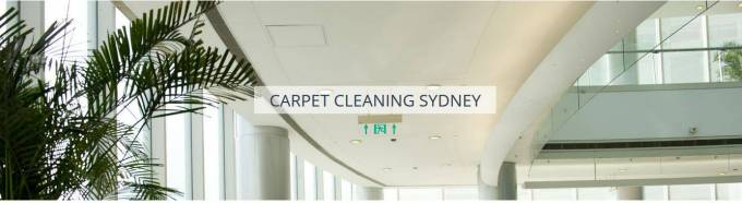 What are the benefits of Carpet Cleaning Services that are environment friendly?