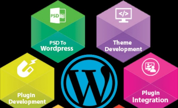 How to Find the best Wordpress Web Development Company